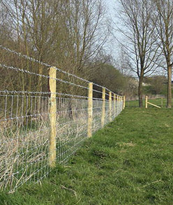 Fencing for Fields