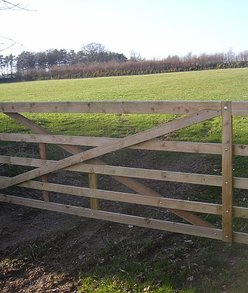 Custom fencing and gates